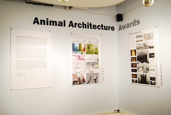 Animal Architecture Exhibition